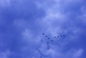 Hunter formation